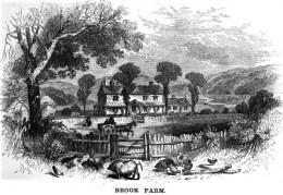 brook farm