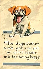 dogcatcher